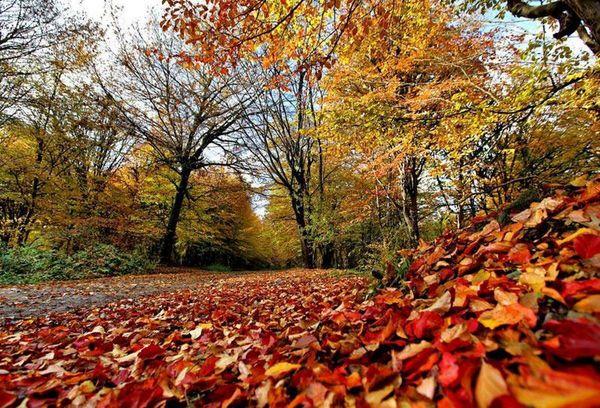 پاییز بدون باران در چهارمحال و بختیاری