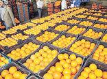 افزایش 1100 درصدی صادرات مرکبات مازندران