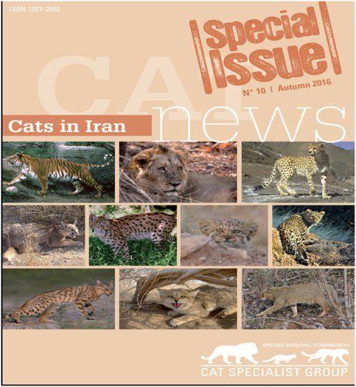 ویژه نامه گربهسانان ایران منتشر میشود