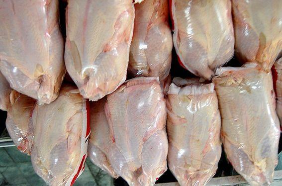 عرضه نامحدود مرغ منجمد در آذربایجان غربی