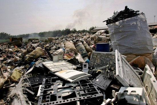 چین سیستم بازیافت زبالههای کشاورزی و دامی را افزایش میدهد