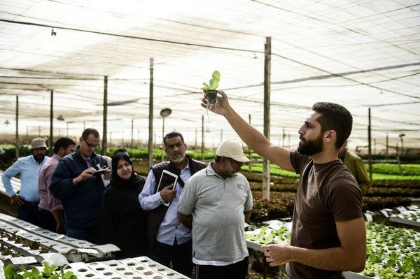 تولید مواد غذایی با منابع کمتر