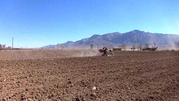 عدم استقبال  کشاورزان فریدونی  از بیمه محصولات کشاورزی