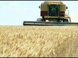 نرخنامه کمباین سال زراعی ۱۴۰۰- ۱۳۹۹اعلام شد.