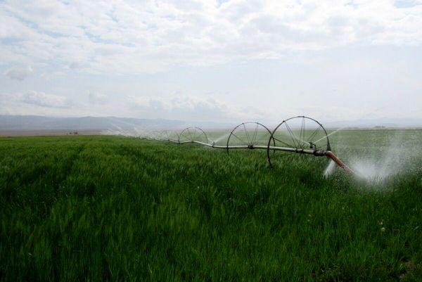 کردستان در توسعه سامانههای نوین آبیاری دومین استان کشور شد