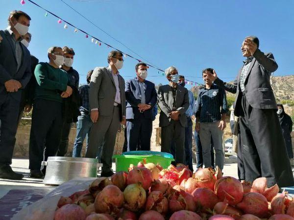 تقویت زیرساختها بخش کشاورزی در روستاها مسیر توسعه را هموار میسازد