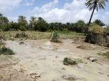 سیل فروردینماه به بخش کشاورزی 11 استان کشور خسارت زد