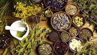 سهم 52درصدی خراسان رضوی در سطح زیرکشت گیاهان دارویی کشور