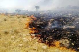 8 هکتار از مراتع شهرستان فیروزکوه در آتش سوخت