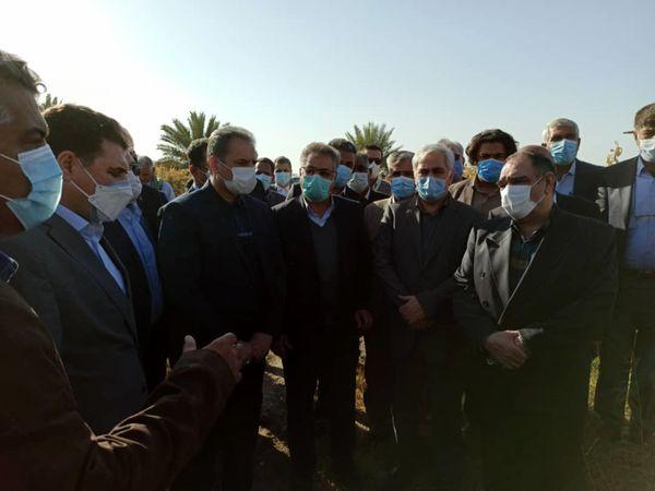بازدید وزیر جهاد کشاورزی از مزارع و باغات خسارت دیده از سرما در جیرفت
