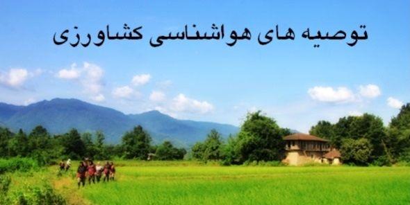 کشاورزان استان تهران از انجام عملیات سم پاشی و محلول پاشی تا دو روز آینده خودداری کنند
