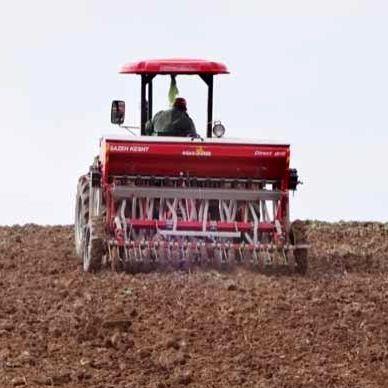کشت محصولات پاییزه در 8 هزار هکتار از اراضی قائمشهر
