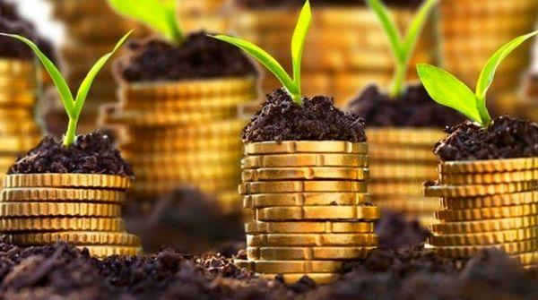 بهبود 46 درصدی تراز تجاری محصولات کشاورزی و صنایع غذایی در سهماهه بهار ۹۹