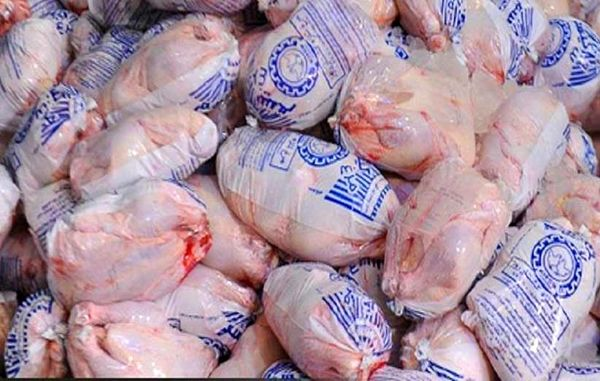 لزوم آموزش و فرهنگسازی در خصوص مصرف مرغ سایز