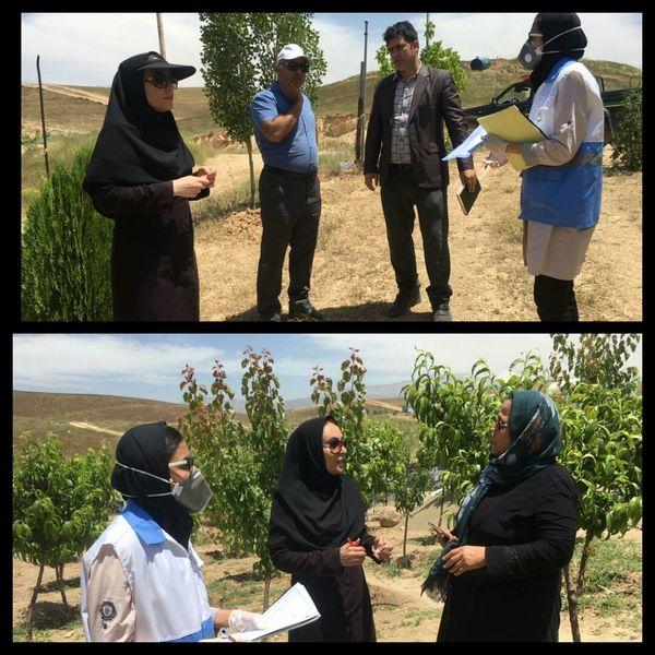 نظارت بر عدم استفاده از آبهای نامتعارف در کشت محصولات کشاورزی الزامی است
