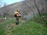مبارزه با ملخهای مراکشی و بومی در سطح6600 هکتار از مراتع استان خراسان شمالی