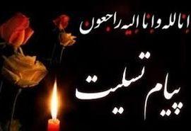 پیام تسلیت رئیس سازمان جهاد کشاورزی استان تهران