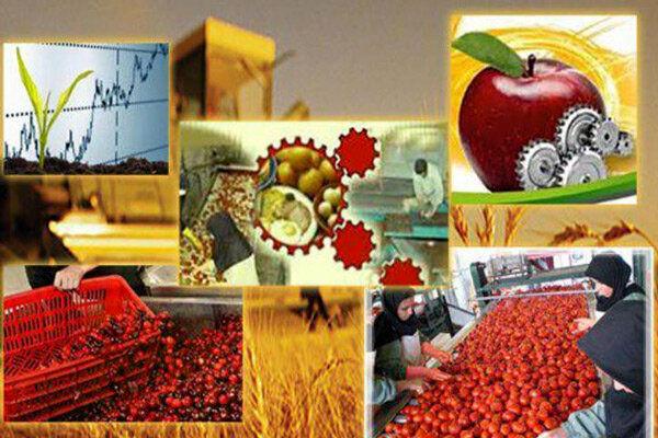 ۵۰۰ تن انواع محصولات کشاورزی به اقلیم کردستان عراق صادر شد
