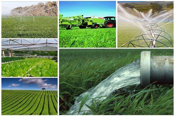 دهه فجر، از پروژه های کشاورزی کردستان چه خبر؟