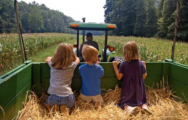 دستورالعمل صدور مجوز «گردشگری کشاورزی» ابلاغ شد