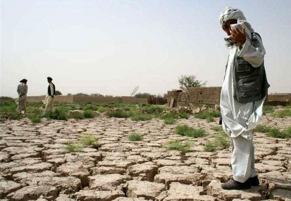 سختترین سال کشاورزی کشور در 50 سال گذشته