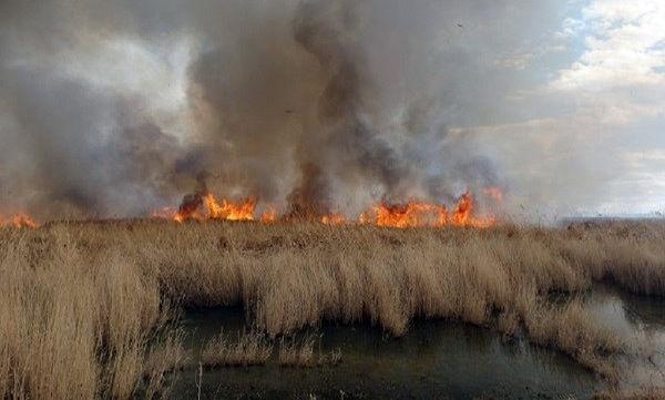 عراق نمیتواند آتش هورالعظیم را خاموش کند