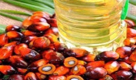 30 درصد روغن مصرفی کشور پالم است