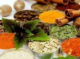 مراسم روز مزرعه در سمنان برگزار شد؛ ایجاد زنجیره ارزش گیاهان دارویی استان سمنان