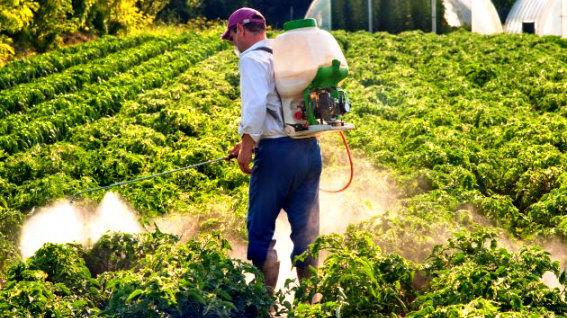 توزیع 16 هزار لیتر سموم کشاورزی توسط شبکه تعاون روستایی استان قزوین