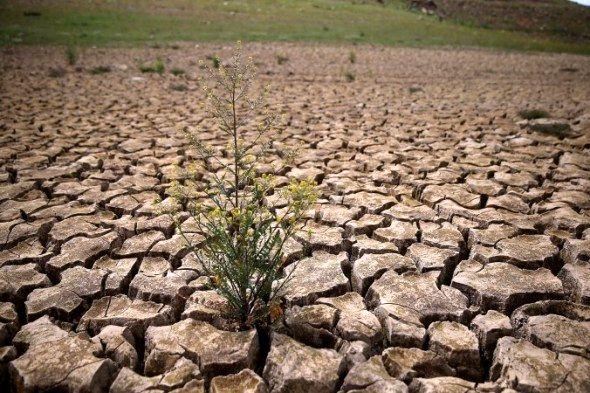 مدیریت آب و هوا امکانپذیر است