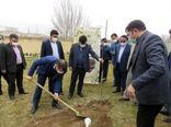 غرس یک اصله نهال میوه توسط رئیس کل دادگستری استان به مناسبت هفته درختکاری
