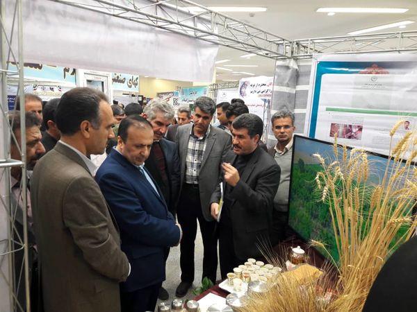 نمایشگاه دستاوردهای پژوهشی بمناسبت هفته پژوهش در ایلام برگزار شد
