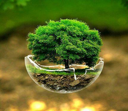 حفظ و صیانت از خاک یک وظیفه جهانی است