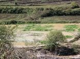 بیش از 58 هزار میلیون ریال کمک بلاعوض به کشاورزان خسارت دیده از سیل فروردین 98 پرداخت شد
