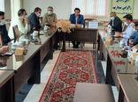 برداشت 28 هزار تن گندم از مزارع شهرستان ورزقان