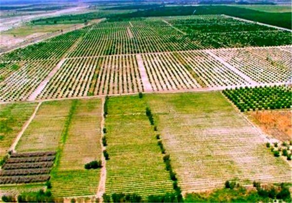 دو دهه بیتوجهی به مشکلات اراضی کشاورزی اردستان