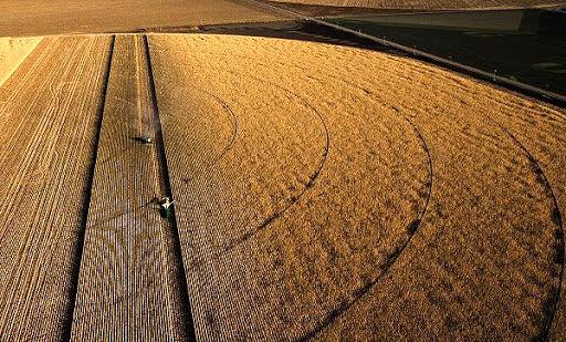 بهبود ضریب خودکفایی در بخش کشاورزی