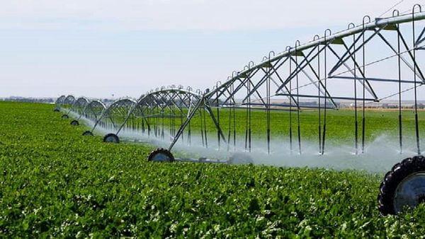 گسترش روشهای جدید آبیاری برای توسعه کشاورزی اصفهان ضروری است