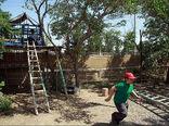 مدارس طبیعت برای نجات بچهها طراحی شد