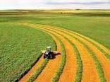 کشاورزان استان بوشهر، کشاورز کارت دریافت کنند