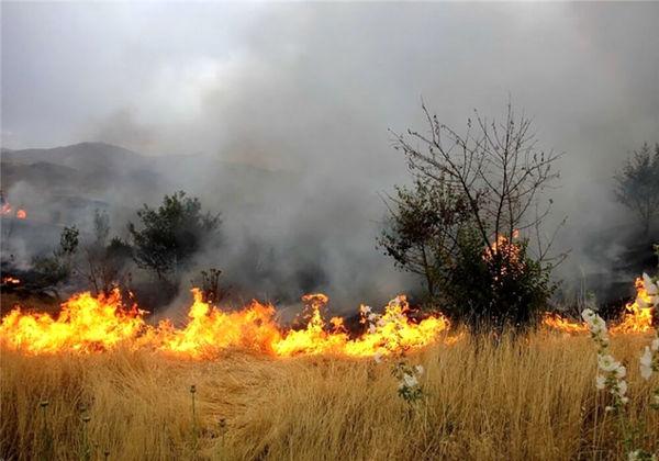 هشدار جهادکشاورزی خراسان شمالی به آتشسوزی در گندمزارها