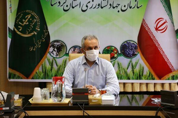 تاکید بر توسعه فعالیتهای مشارکتی در بخش کشاورزی کردستان
