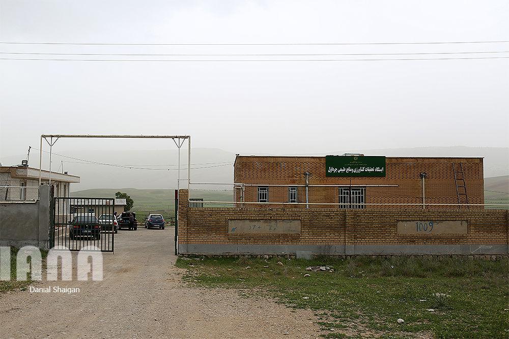 ایستگاه چندمنظوره تحقیقاتی کشاورزی ایلام