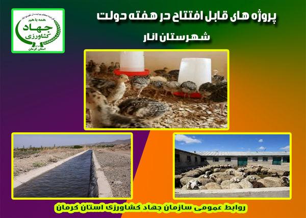 چهار طرح دامپروری و آب و خاک شهرستان انار در هفته دولت به بهره برداری میرسد