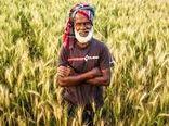 رونق تجارت کشاورزی در بنگلادش