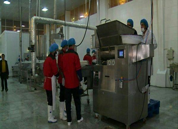 افتتاح مجتمع واحد تولیدی صنایع گوشتی در ورامین