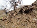 خسارت سیل و بارندگی به بخش کشاورزی شهرستان ارزوئیه