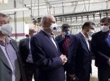 مشاور  وزیر جهاد کشاورزی از کشتارگاه صنعتی طیور در گرمسار بازدید کرد