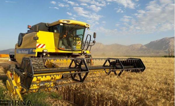 بیش از ۱۱۹ هزار تن گندم در خراسان شمالی خریداری شد