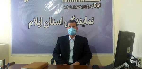 توزیع نهادههای دامی به دامداران استان ایلام